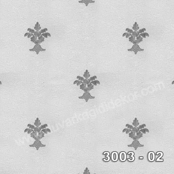 Armani-3003-02